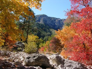 Fall-Colors-McKittrick-112-Buehler-yes