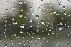rain-57bb8fcf3df78c876339a4e2